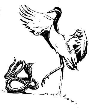 Жерав и змия