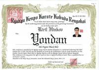 Рюкю Буджуцу Йондан сертификат