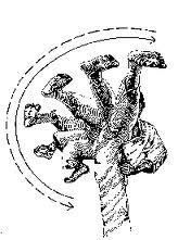 Маваши гери - кръгообразен ритник